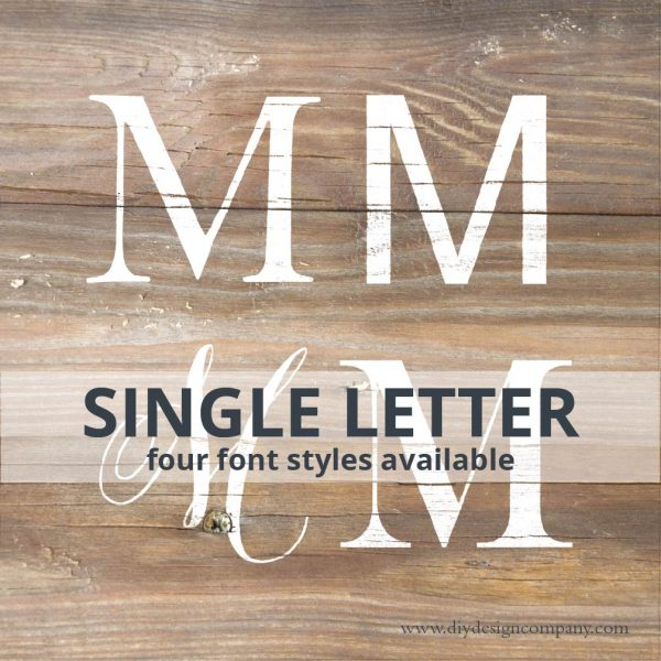 Single Letter in 4 different font styles
